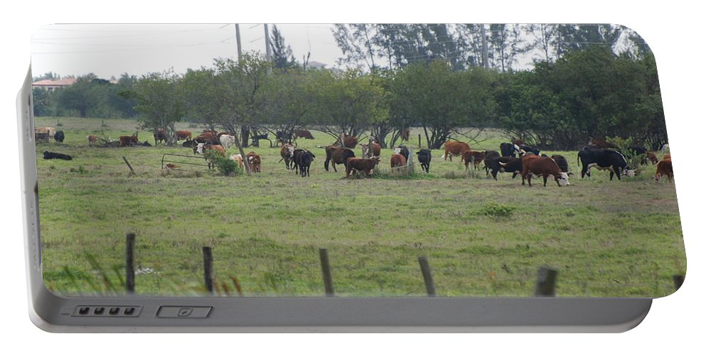 Trees Portable Battery Charger featuring the photograph Florida Ranch by Rob Hans