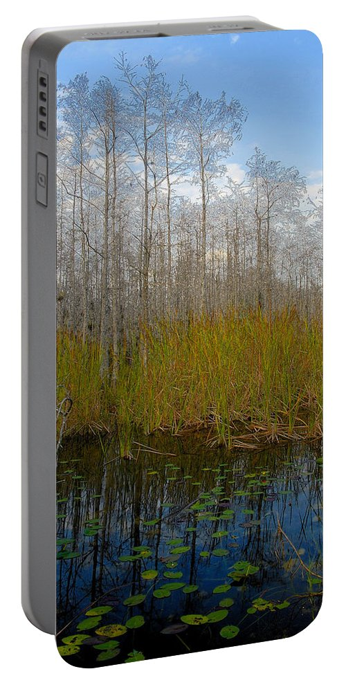Florida Portable Battery Charger featuring the painting Florida Wilderness by David Lee Thompson