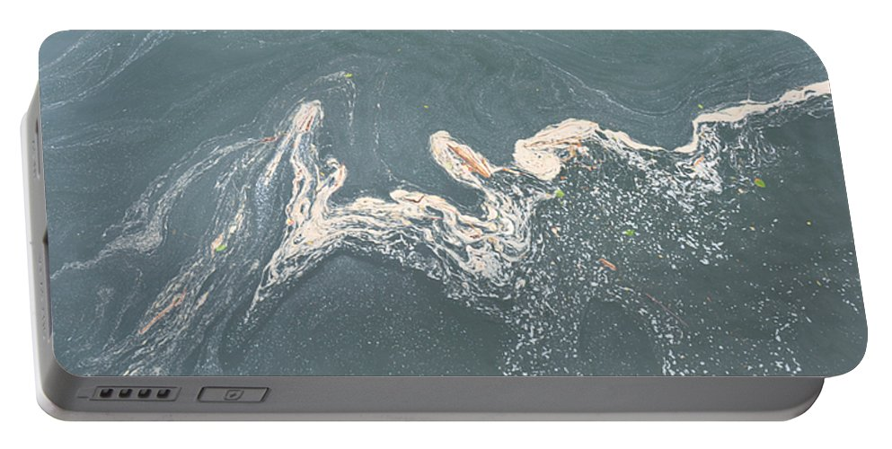 Lake Portable Battery Charger featuring the photograph Flotsam by Rich Bodane