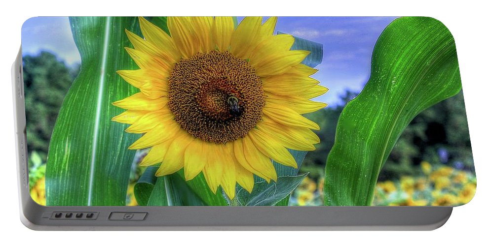 #sunflower Portable Battery Charger featuring the photograph Flower # 38 by Albert Fadel