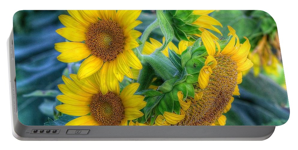 #sunflower Portable Battery Charger featuring the photograph Flower #40 by Albert Fadel