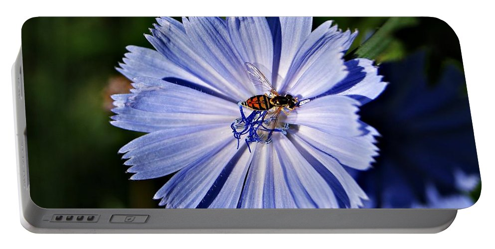 Blue Portable Battery Charger featuring the photograph Flower And Bee 2 by Joe Faherty