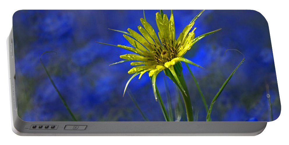 Flower Portable Battery Charger featuring the photograph Flower And Flax by Heather Coen