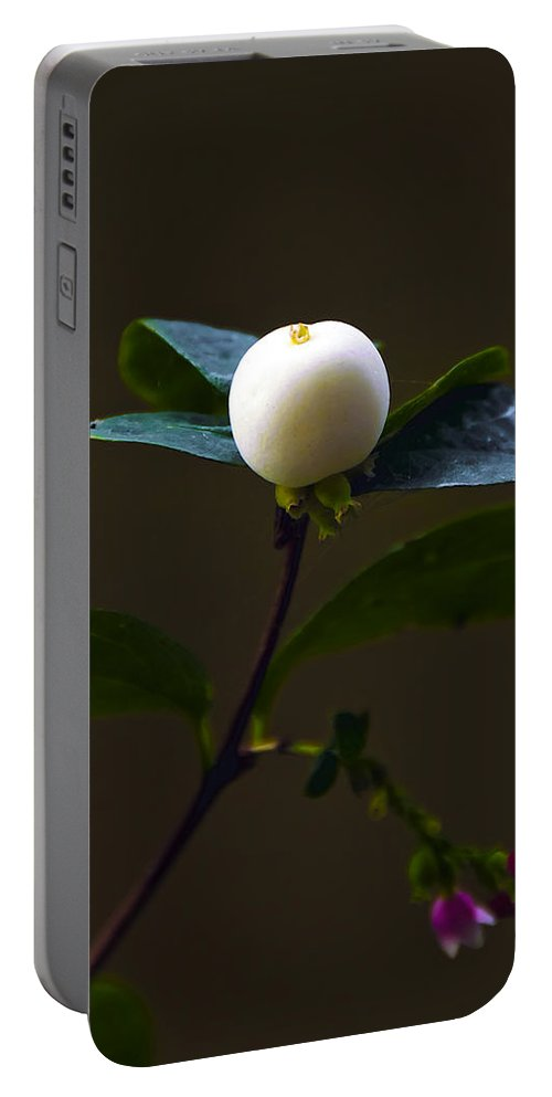 Botanic Portable Battery Charger featuring the photograph Flower Ball by Svetlana Sewell