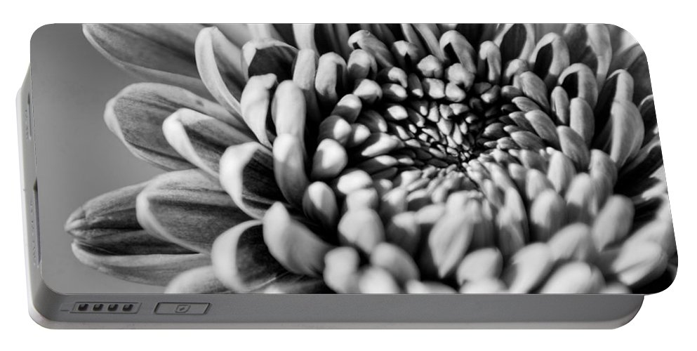 Black And White Portable Battery Charger featuring the photograph Flower Black And White by Jill Reger