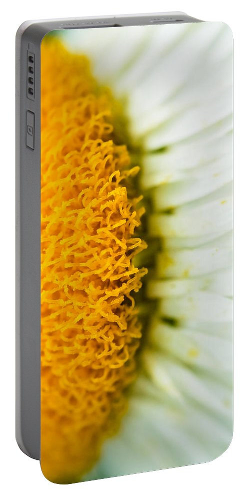 Branch Portable Battery Charger featuring the photograph Flower Blossom 2 by Jijo George