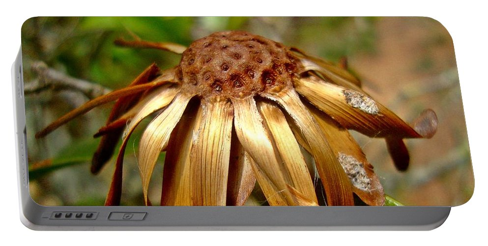 Flower Portable Battery Charger featuring the photograph Flower by Carlos Kogl