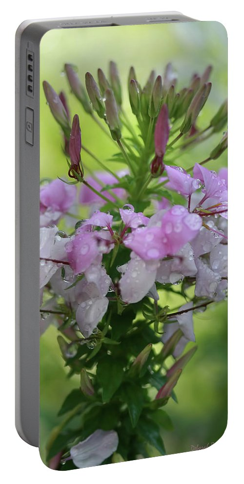 Flowers Portable Battery Charger featuring the photograph Flower Dew Beauty by Deborah Benoit