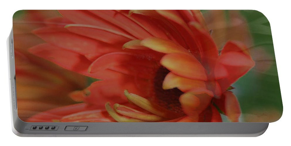 Flowers Portable Battery Charger featuring the photograph Flower Dreams by Linda Sannuti