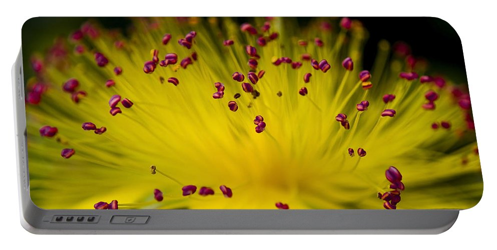 Pink Portable Battery Charger featuring the photograph Flower In Macro by Svetlana Sewell
