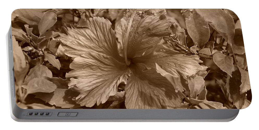 Sepia Portable Battery Charger featuring the photograph Flower In Sepia by Rob Hans