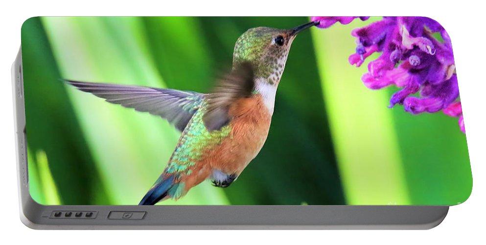 Hummingbird Portable Battery Charger featuring the photograph Flower Kisser by Edita De Lima