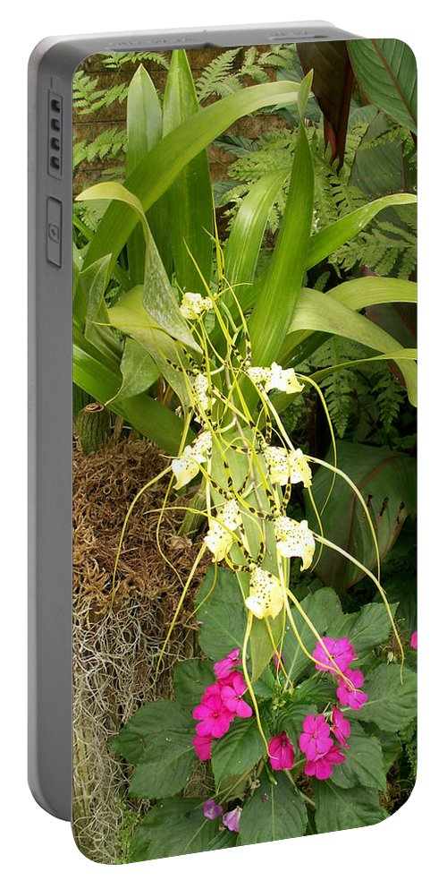 Flower Portable Battery Charger featuring the photograph Flower Mix by Amy Fose