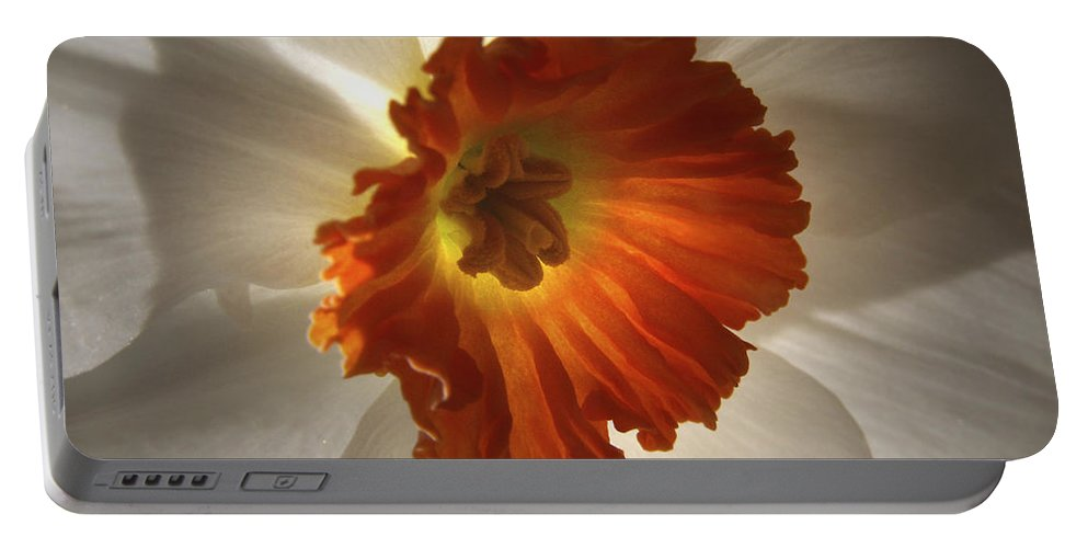 Flowers Portable Battery Charger featuring the photograph Flower Narcissus by Nancy Griswold
