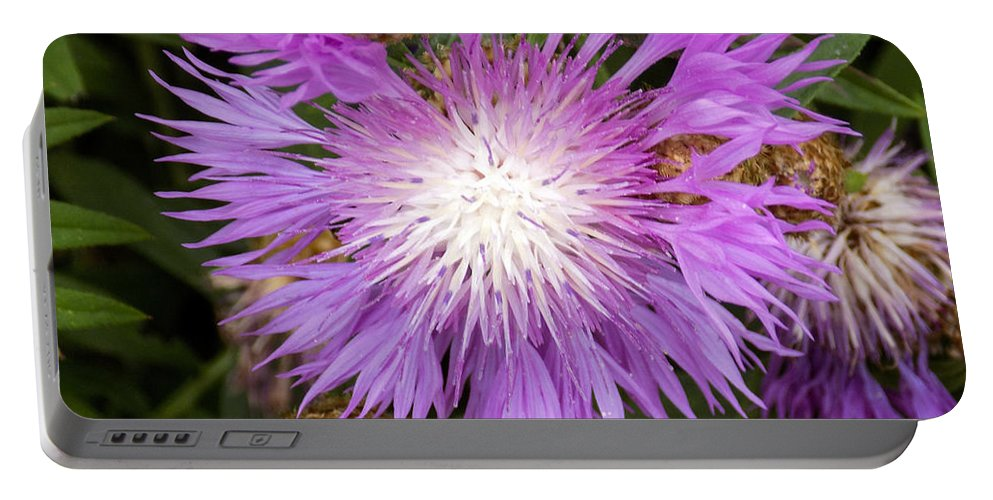 Flowers Portable Battery Charger featuring the photograph Flower Snowflake by William Tasker