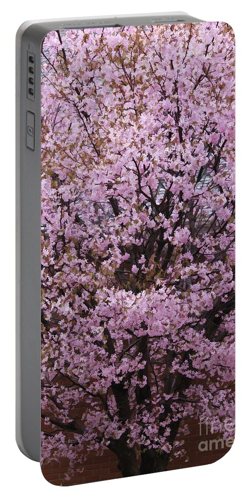 Tree Portable Battery Charger featuring the photograph Flowering Pink In Spring by Deborah Benoit