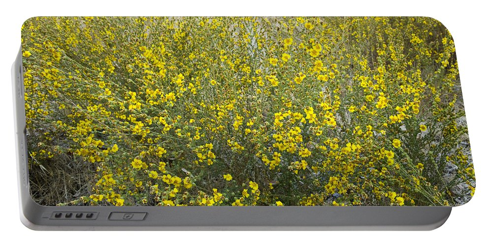 Tarweed Portable Battery Charger featuring the photograph Flowering Tarweed by Inga Spence