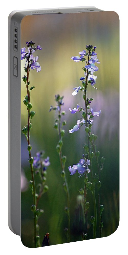 Nature Portable Battery Charger featuring the photograph Flowers By The Pond by Robert Meanor