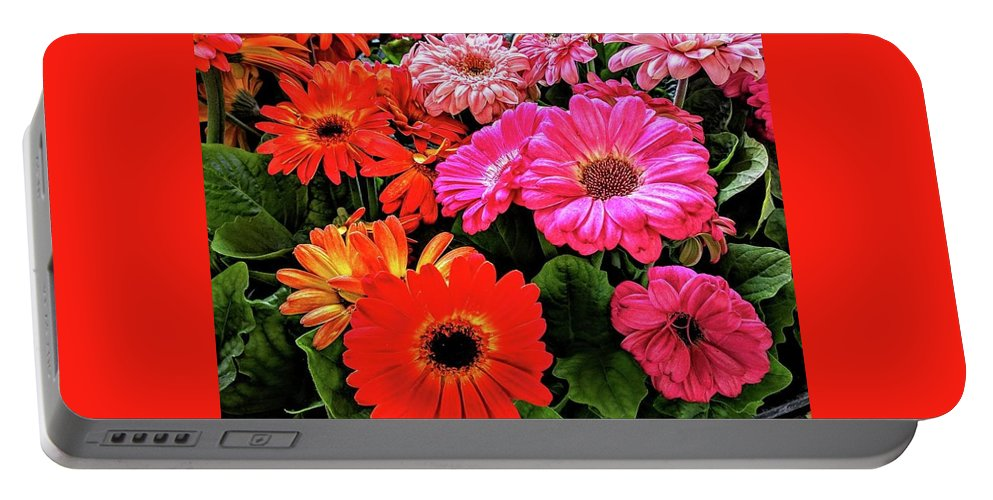 Flowers Portable Battery Charger featuring the photograph Flowers by George Noleff