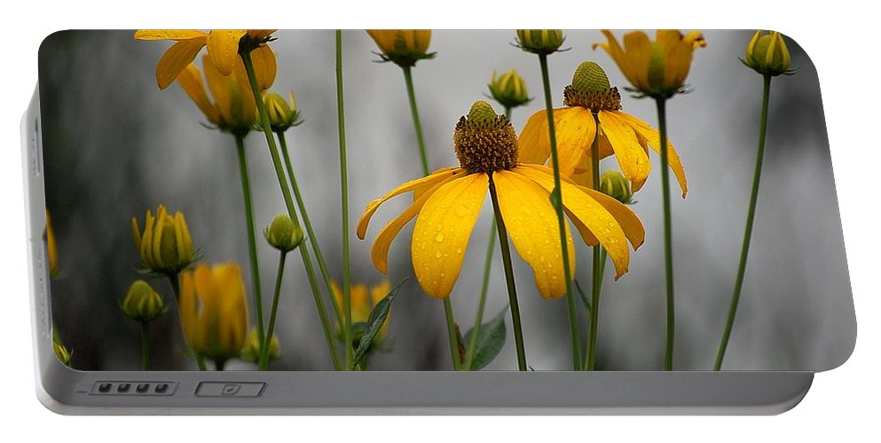 Black Eyed Susan Portable Battery Charger featuring the photograph Flowers In The Rain by Robert Meanor