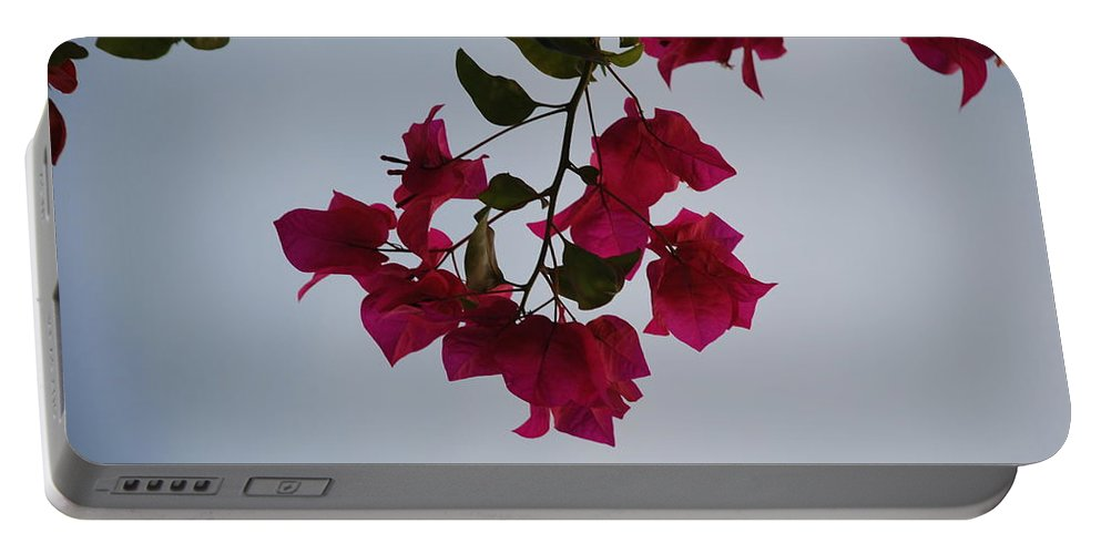 Flowers Portable Battery Charger featuring the photograph Flowers In The Sky by Rob Hans