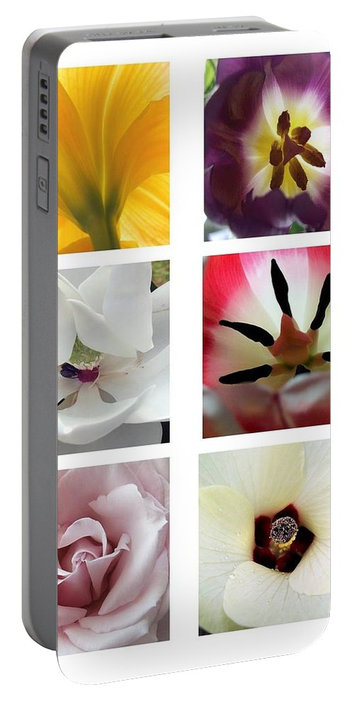 Flowers Portable Battery Charger featuring the photograph Flowers In The Yard by Robert Meanor