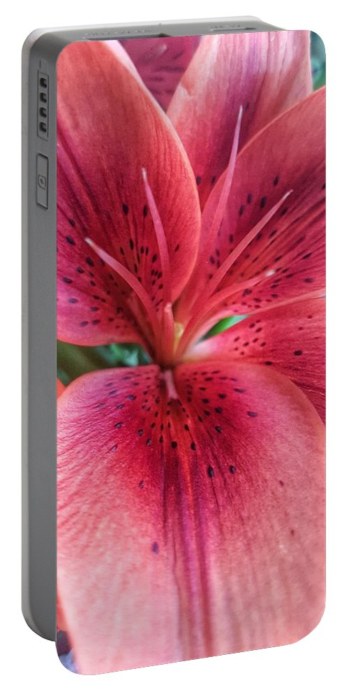 Pink Portable Battery Charger featuring the photograph Flowers by Nadia Seme