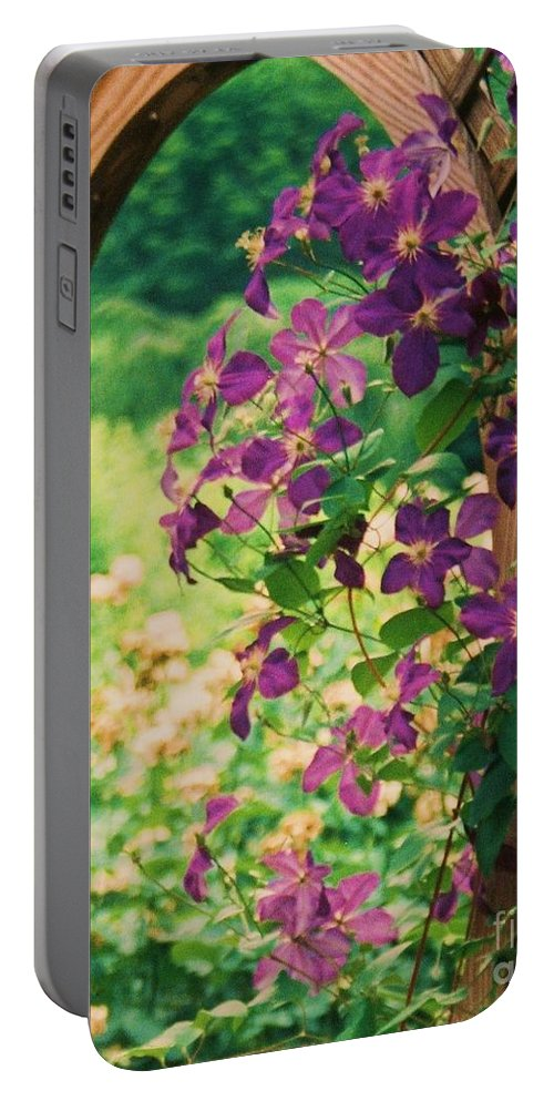 Floral Portable Battery Charger featuring the painting Flowers On Vine by Eric Schiabor