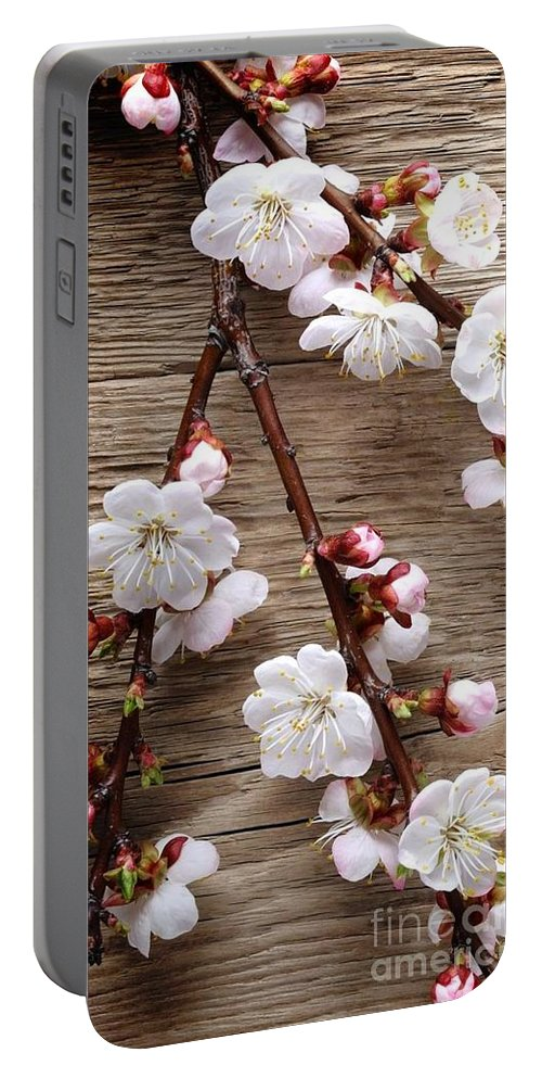 Portable Battery Charger featuring the photograph Flowers On Wall by Rishabh Verma