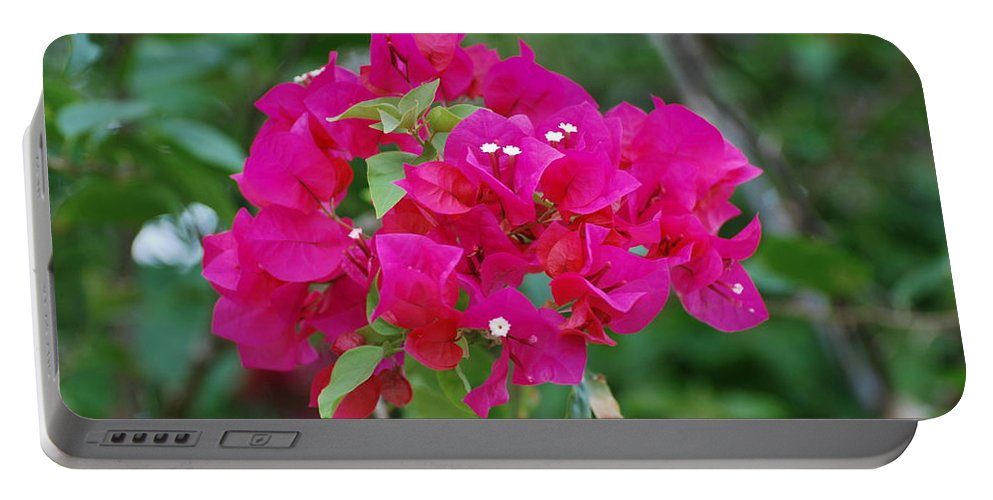 Flowers Portable Battery Charger featuring the photograph Flowers by Rob Hans