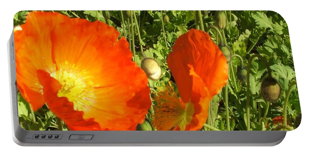 Flowers Portable Battery Charger featuring the photograph Flowers by Shari Chavira