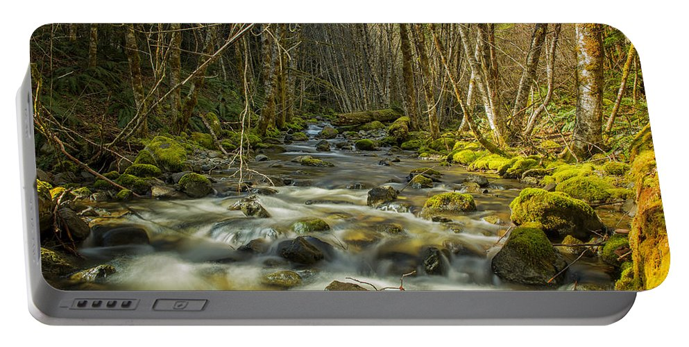 Stream Portable Battery Charger featuring the photograph Flowing by Belinda Greb