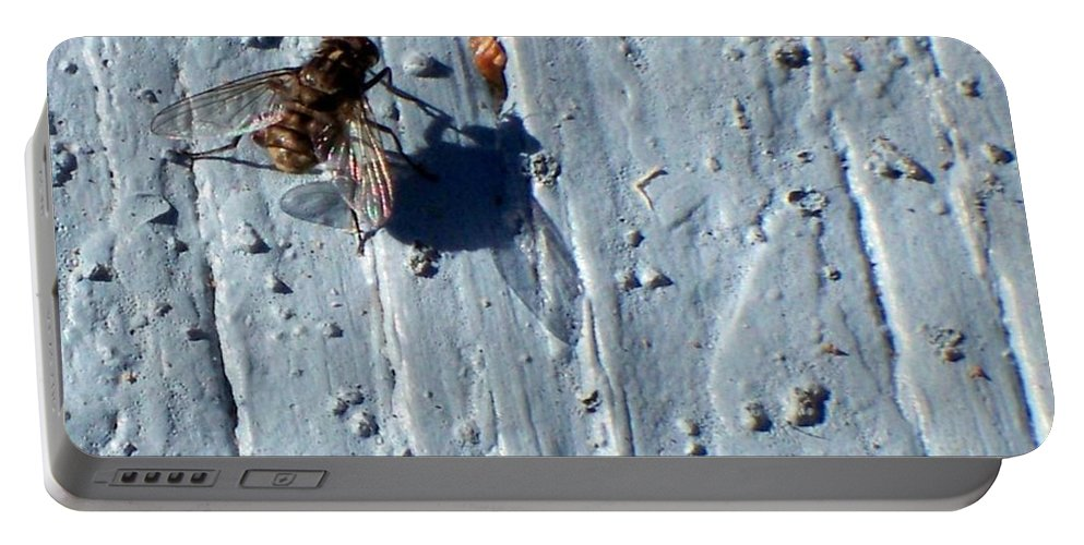 Fly Portable Battery Charger featuring the photograph Fly On The Wall by Betty Northcutt