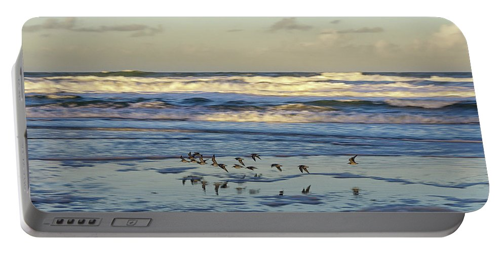 Sea Bird Portable Battery Charger featuring the photograph Flyby by Michael Thames