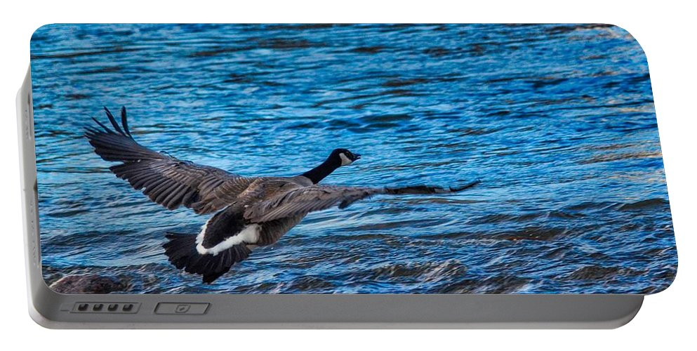 Wildlife Portable Battery Charger featuring the photograph Flying Over Rough Waters by James Stewart