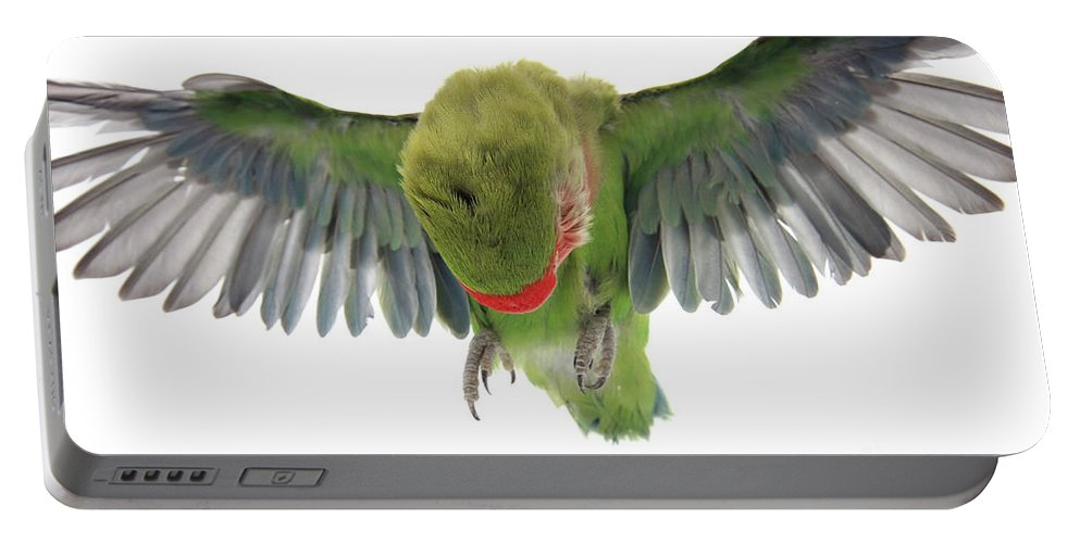 Fly Portable Battery Charger featuring the photograph Flying Parrot by Yedidya yos mizrachi