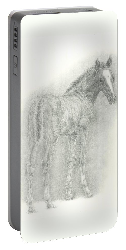 Foal Portable Battery Charger featuring the drawing Spring Foal by Jennifer Nilsson