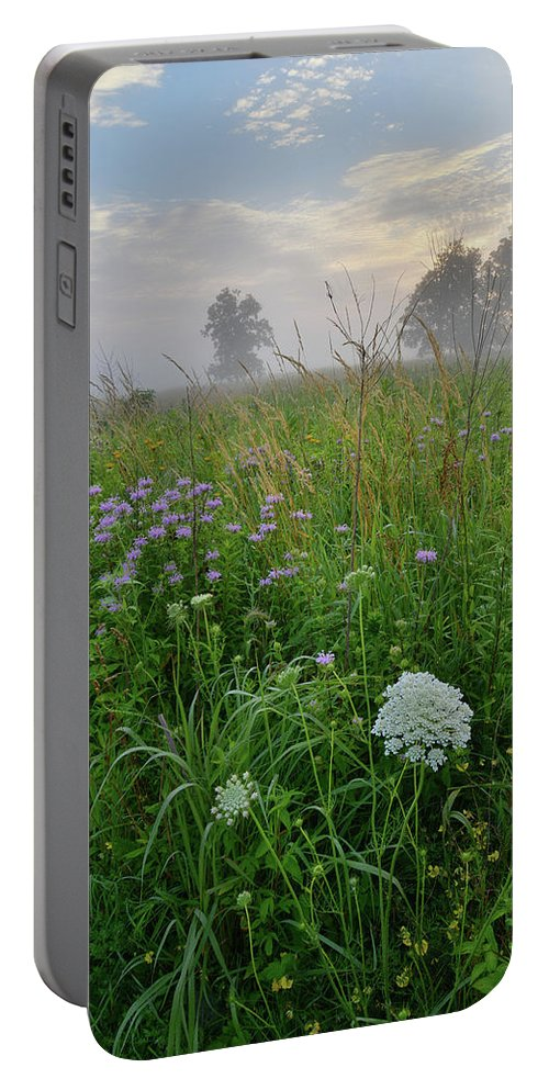 Black Eyed Susan Portable Battery Charger featuring the photograph Foggy Prairie In Glacial Park In Mchenry County by Ray Mathis