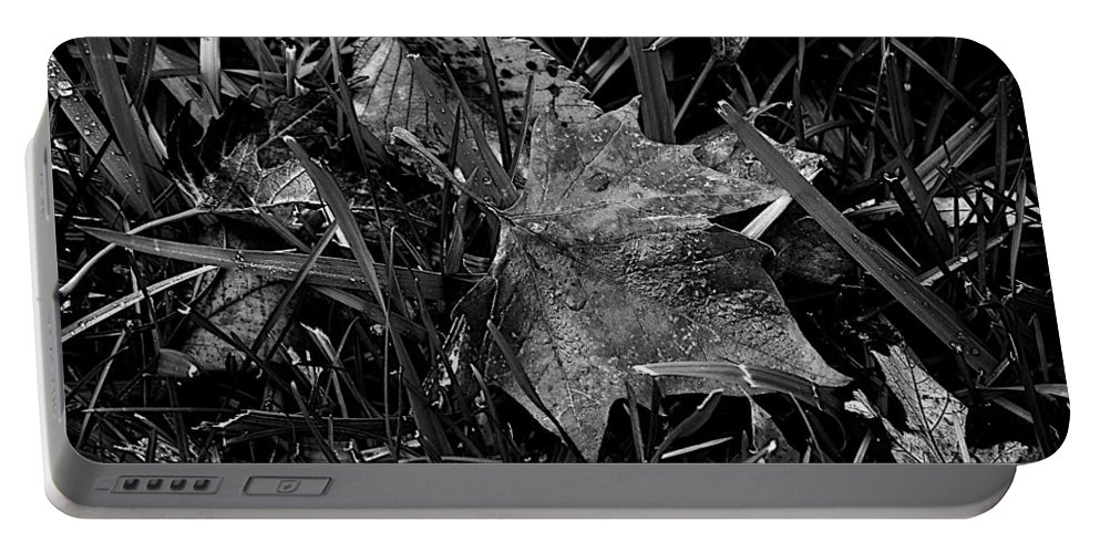 Frankjcasella Portable Battery Charger featuring the photograph Foliage in the Grass by Frank J Casella