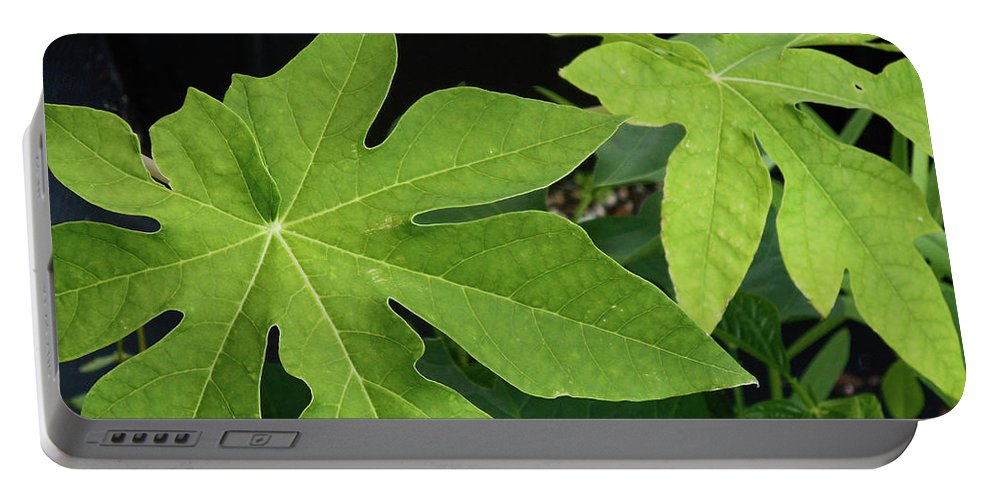 Easterseals Southwest Florida Portable Battery Charger featuring the photograph Foliage by Jason L