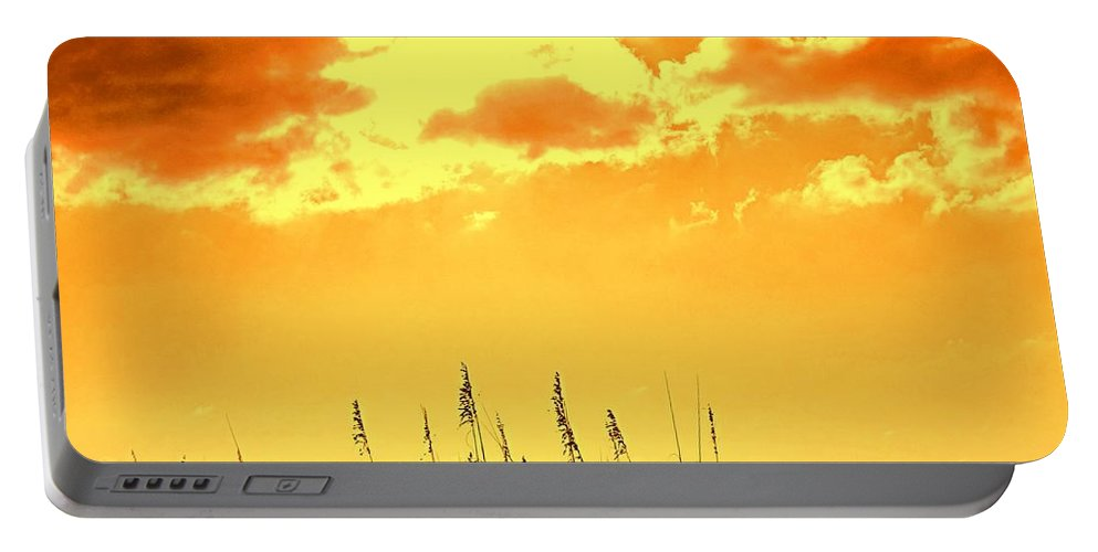 Sun Portable Battery Charger featuring the photograph For When Winter Gets To You by Ian MacDonald