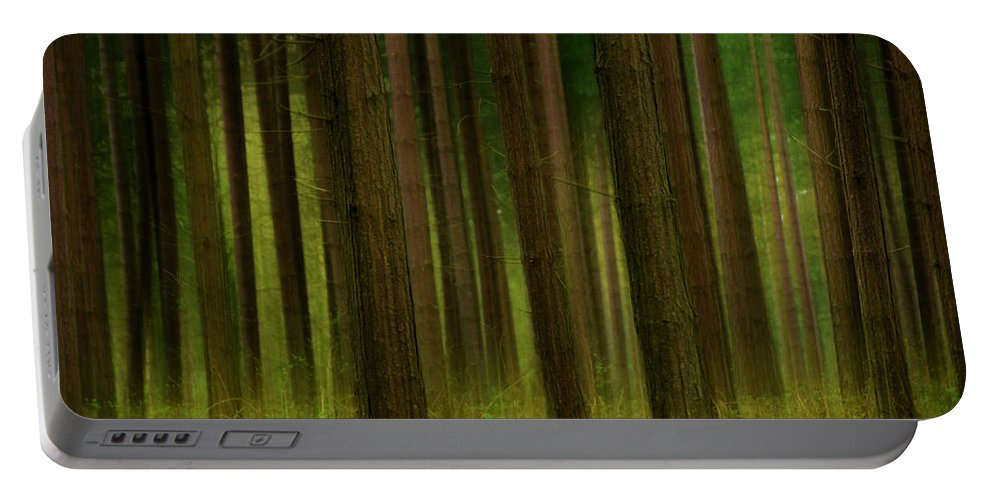 Forest Portable Battery Charger featuring the photograph Forest Abstract01 by Svetlana Sewell