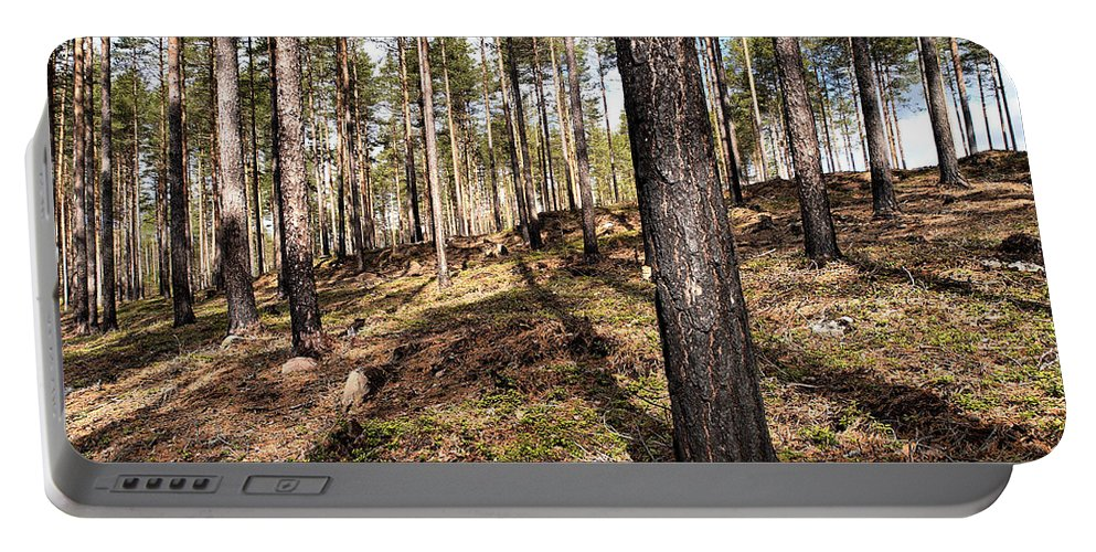 Lehtokukka Portable Battery Charger featuring the photograph Forest Next Summer After A Fire by Jouko Lehto