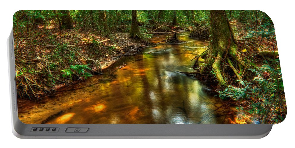 Creek Portable Battery Charger featuring the photograph Forest Creek by Rich Leighton