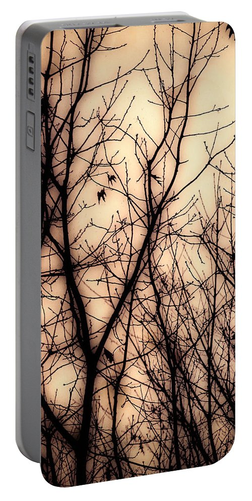 Tree Portable Battery Charger featuring the photograph Forest Dreams by Bob Orsillo