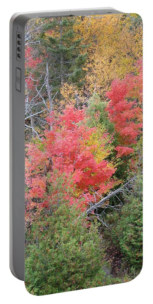 Fall Portable Battery Charger featuring the photograph Forest Fire by Kelly Mezzapelle