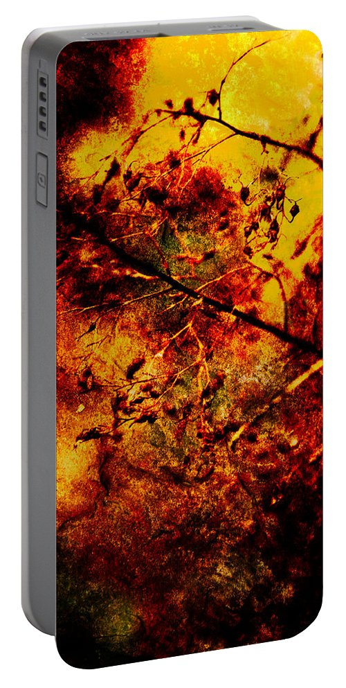 Fire Portable Battery Charger featuring the photograph Forest Fire by Onyonet Photo Studios