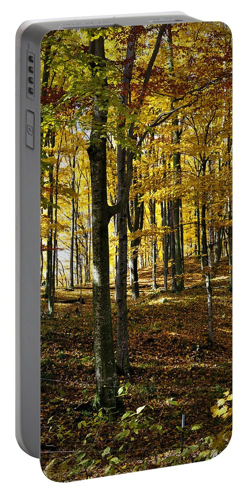 Autumn Portable Battery Charger featuring the photograph Forest Floor by Tim Nyberg