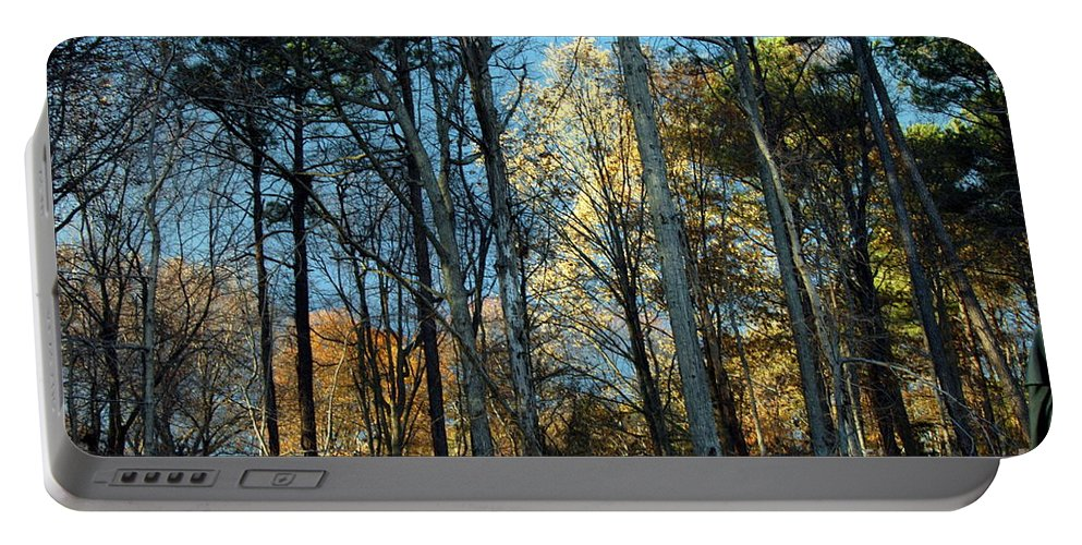 Clay Portable Battery Charger featuring the photograph Forest For The Trees by Clayton Bruster