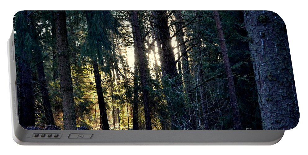 Forest Portable Battery Charger featuring the photograph Forest Magic 8 by Angelika Heidemann